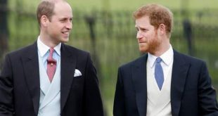 الأميرة ديانا تجمع الأمير هاري مع ويليام بعد أشهر من الخلافات!